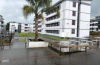 没有雅思怎么办?在家就能学!最短8周直升新西兰怀卡托大学!还有奖学金拿