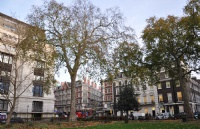 伦敦大学伯贝克学院回国就业真实现状