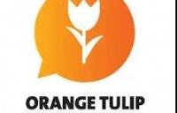 橙色郁金香奖学金(OTS)5月15日截止申请|蒂尔堡大学TIAS商学院