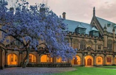 抗疫留学两不误,双非学子成功申请悉尼大学法学硕士!