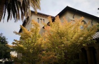 布兰迪斯大学,中国学生最青睐的留学院校