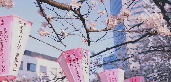 日本公布首批放宽入境国,7月生还能留学日本吗?