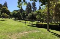 世界排名领先,加州大学洛杉矶分校到底有多厉害?
