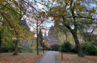 白金汉大学是否被高估?