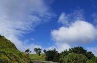 新西兰惠灵顿留学