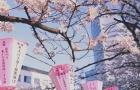 去日本读语言学校,什么时候申请最合适?