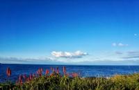 澳洲的旅游管理专业有哪些优势?
