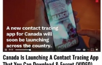 快讯!加拿大将发布COVID-19病例追踪APP,你身边谁得了一目了然!