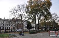 喜获纽卡斯尔大学录取!让英伦留学梦不再是梦!