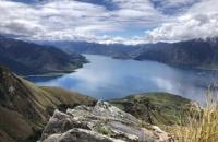 新西兰食品专业留学