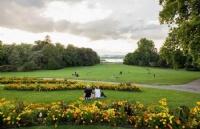 荷兰高校政策更新丨蒂尔堡大学、格罗宁根应用科学大学