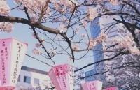 日本外国人登陆证办理方法
