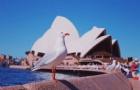 """这里有一份澳洲留学申请指南""""拍了拍你""""!"""