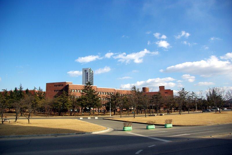 """好大学并非""""高不可攀""""!盘点性价比超高的韩国博士院校"""