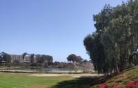 要怎样努力才能考上加州大学圣地亚哥分校?