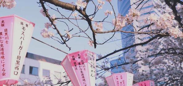 好消息!日本留学生(4月生、7月生)马上就可以入境了