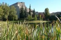 皇家山大学是一个怎样的存在?