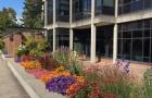 美国大学今年秋季学期入学率下降20%,预计2021院校全面扩招!