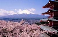 日本4个开学季中,应该选几月呢?