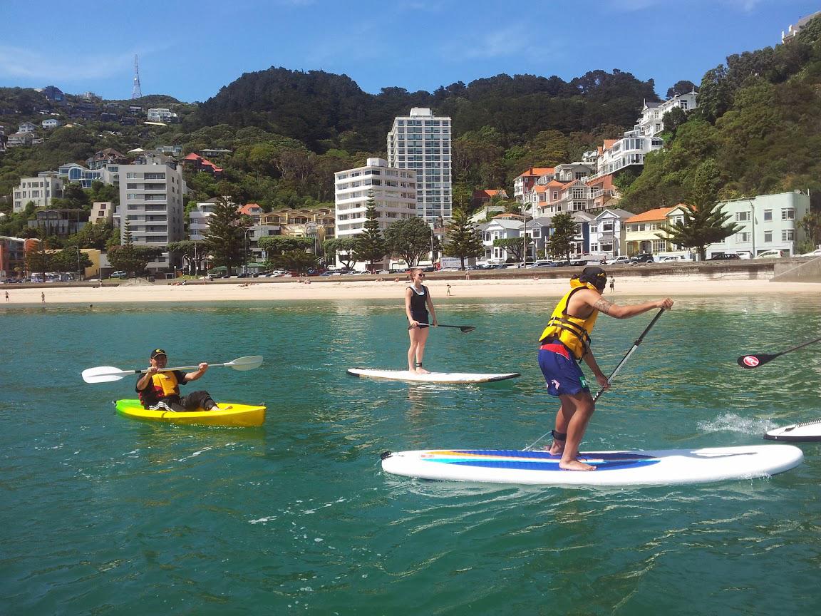 新西兰留学热!疫情导致新西兰留学申请暴增5成以上?