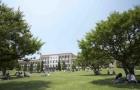 国际基督教大学ICU:最接近美式教育的不二之选