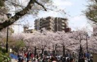 历史悠久,设施齐备的语言学校,安日本语学校!
