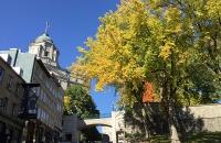 加拿大这所大学更新9月秋季返校计划,上课必须戴口罩!