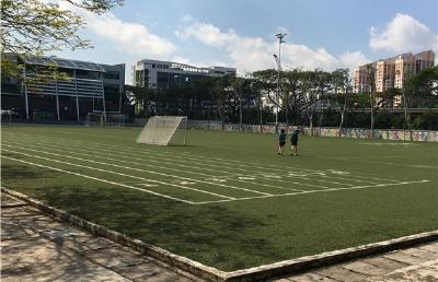 新加坡澳洲国际学校特色课程全分析