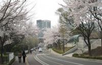 韩国低调但有实力的大学――西江大学