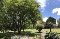 好消息!澳洲公布5条留学新政:485工签可境外递交!学生签续签免费!