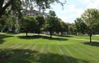 美国东北大学并不是那么高不可攀