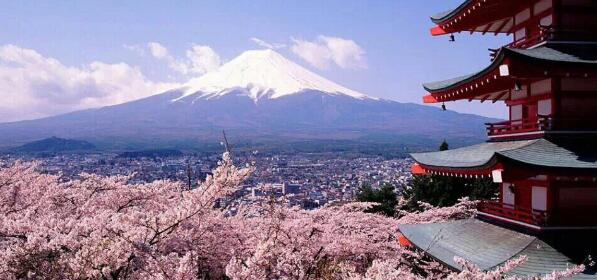 2020年日本高考生大学志愿排行榜出炉!最有人气的大学竟然是...