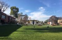 加州大学欧文分校本科申请难度大吗?