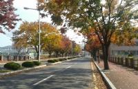 国立公州大学:韩国最高师范学院所在