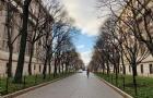2020年泰晤士世界大学专业排名!美国高校表现如何?