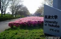双非学子跨专业走文科,日本名校筑波大学offer收入囊中!