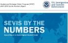 美国权威留学生报告:47万中国留学生拿下两个第一!