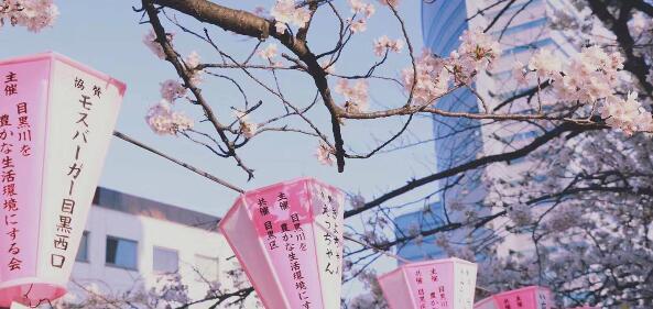 """日本最新版""""适宜居住地""""排行榜!东京不是第一名?"""