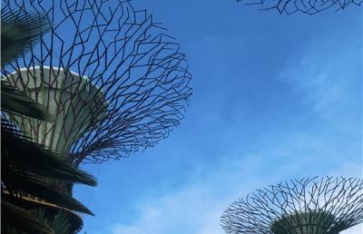 疫情影响过后,首批持航空通行证旅客飞抵新加坡