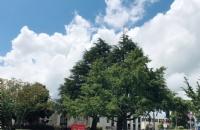 目标明确+细致规划,双非学子逆袭怀卡托大学!