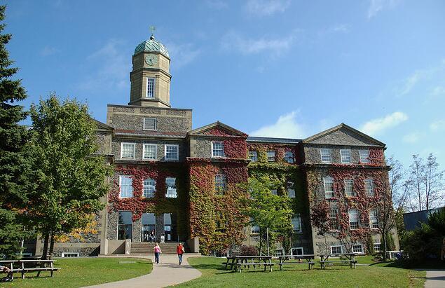 加拿大国际学生学费还要涨?是时候申请一波奖学金了!