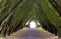 爱尔兰国立高威大学硕士学费、生活费大概多少?
