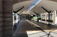 澳大利亚圣母大学高中生能直接报考吗?