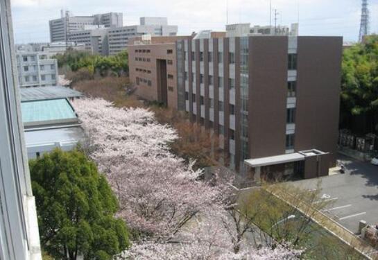 日本诞生首相的高校大盘点,有你想去的吗?
