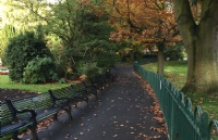 爱尔兰都柏林大学的淘汰率高吗?