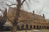 墨尔本大学哪些专业比较好?