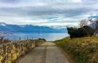 """理诺士学生分享:关于的瑞士10条""""冷知识"""""""