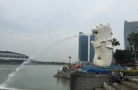 赴新加坡科廷大学留学的成本大约是多少?