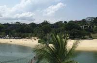 如何才能成功申请新加坡莱佛士设计学院本科?