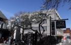 奥塔哥大学再次领跑全球!在线MBA排名全球第十
